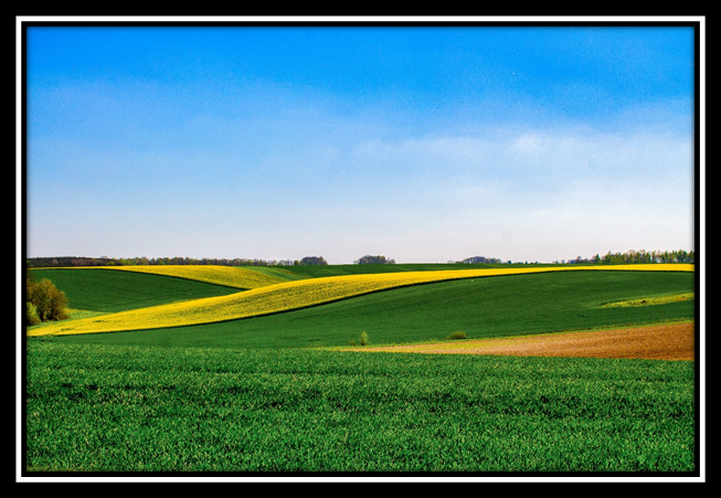 The Secret of farm investment